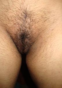desi babe hairy chut