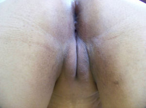 indian pussy wet xxx porn pic