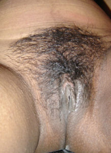 wet hairy pussy pic