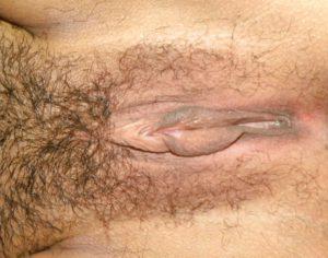 desi hairy bhabhi pussy pic